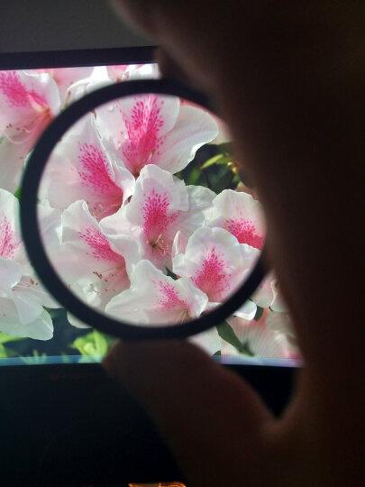 天气不错 62mm超薄Slim UV滤镜 适合尼康70-300/佳能索尼18-200腾龙适马富士奥林巴斯等微单单反相机镜头 晒单图