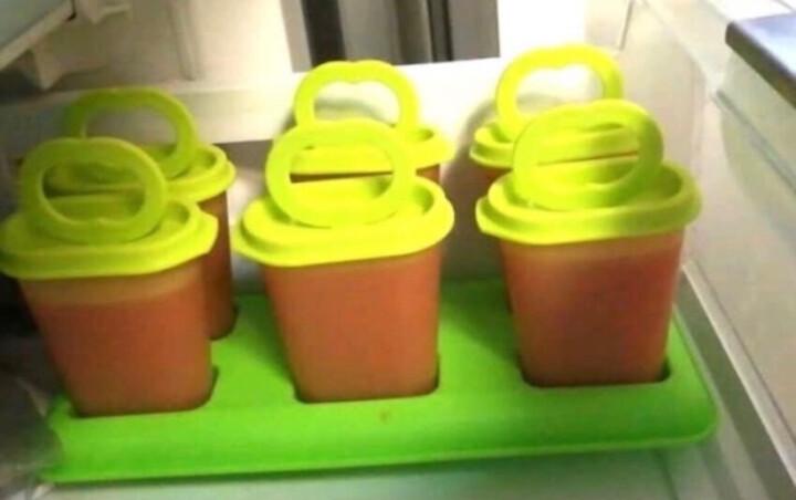 特百惠(Tupperware) 特百惠冰棍模具 冰格 趣致夏日酷乐冰棒模具带盖 雪糕模具 单个冰棒小模 晒单图