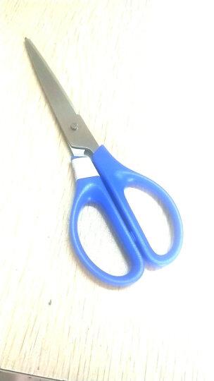 得力(deli)3把170mm办公家用剪刀(2黑1蓝) 办公用品 33306 晒单图