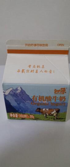 归原 巴氏杀菌 有机低脂凝固型酸奶酸牛奶 115g*8 整箱装 晒单图