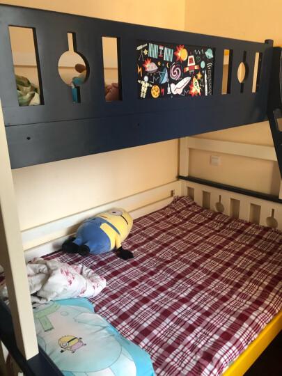 多喜爱(DUOXIAI) 多喜爱儿童床垫 椰棕护脊  弹簧床垫棉簧床垫 30天内发货 10公分全棕 1350*2000mm 晒单图