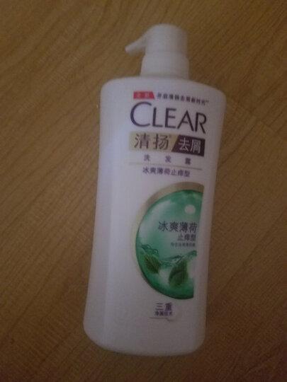 清扬(CLEAR)无硅油洗发水 去屑洗发露海藻菁萃型750g (新老包装随机发)(氨基酸洗发) 晒单图