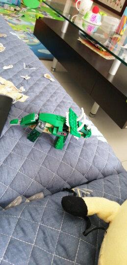 【乐高认证专营店】乐高积木创意百变三合一系列 恐龙 男孩子拼装儿童玩具小颗粒 沙漠越野车31087(6岁+  147粒) 晒单图