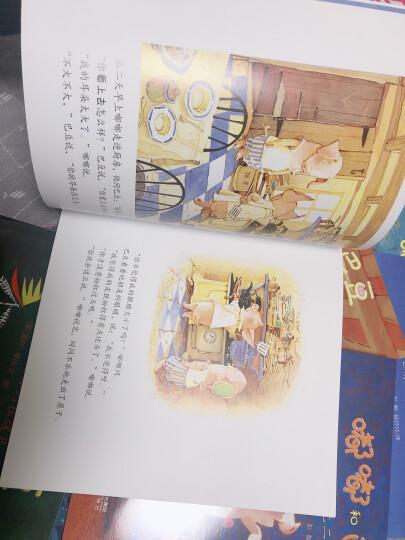 嘟嘟和巴豆系列(套装共10册) 晒单图