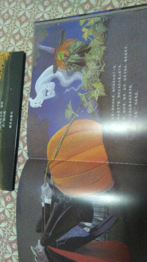 万圣节的大南瓜 爱心树绘本童书 晒单图