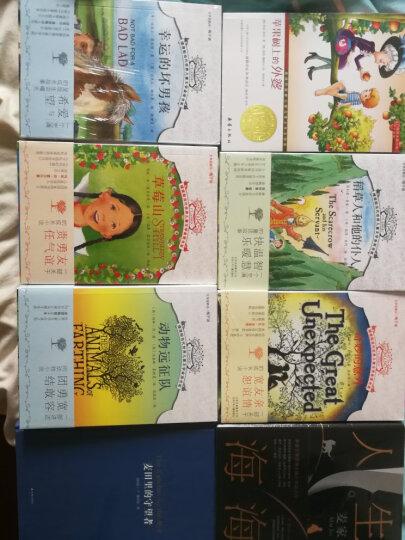 动物远征队 草莓山 稻草人和他的仆人 幸运的坏男孩 幼儿图书 早教书 故事书 儿童书籍 晒单图
