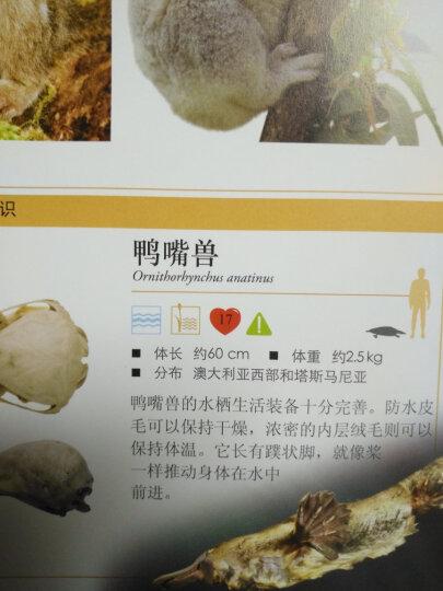 DK儿童动物百科全书(2018年全新修订版) 晒单图