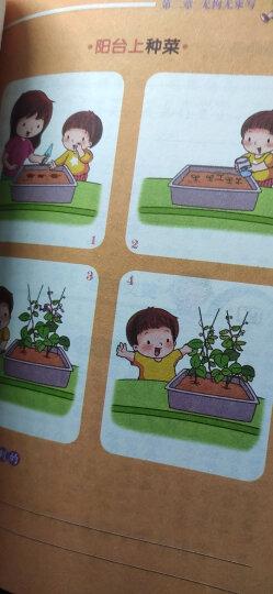 别怕作文:小学生看图说话写话(小学一至三年级适用 彩图注音版) 晒单图
