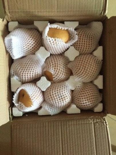 品赞 山东丰水梨2.5kg 秋月梨冰糖梨新鲜梨子 晒单图