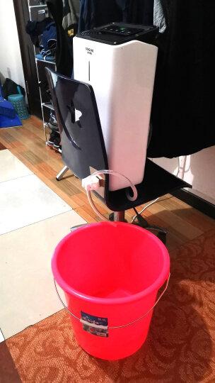 松井(SONGJING)抽湿机/除湿机 除湿量12升/天 噪音42分贝 智能数控 家用地下室净化干衣吸湿器 SJ-121E 晒单图