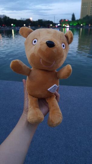 小猪佩奇啥是佩奇PeppaPig粉红猪小妹毛绒玩具3-6岁礼品乔治生日礼物背包小熊恐龙 29cm佩奇的小熊 晒单图