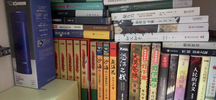 新东方麻辣鲜师独门英语驾驭术3:不择手段记单词 晒单图