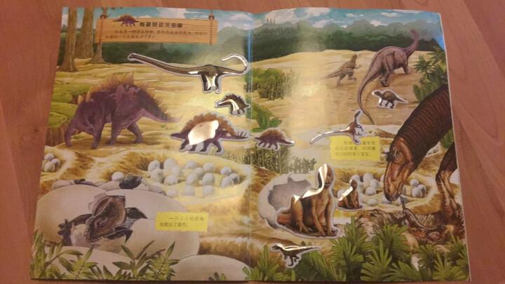 恐龙帝国泡泡贴:植食性恐龙 晒单图