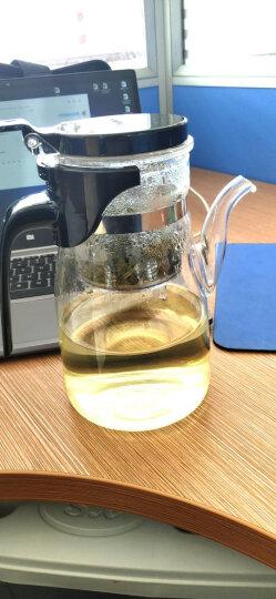 金灶(KAMJOVE) 大容量飘逸杯泡茶壶 耐热玻璃茶具泡茶杯茶壶 过滤花茶壶泡茶器茶水分离杯 K-208/900毫升 晒单图