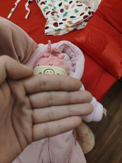 婴儿帽子春秋新生儿胎帽0-3-6-12个月男女宝宝帽 贪吃猫-(蓝)适合3-8个月 晒单图