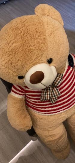 爱尚熊泰迪熊毛绒玩具布娃娃玩偶抱枕大号抱枕抱抱熊公仔礼物送女友老婆80cm爱你每一天 晒单图