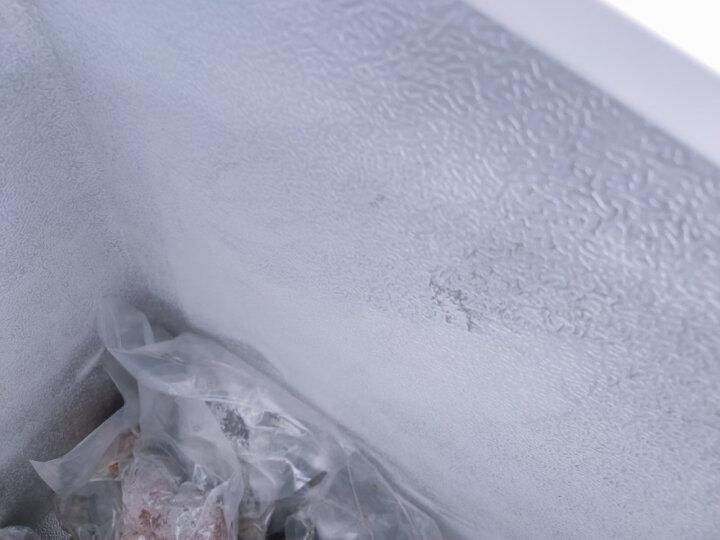 澳柯玛(AUCMA)208升 家用商用冰柜  冷藏冷冻转换冷柜  节能顶开冰箱 BC/BD-208HNE 晒单图