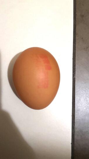 德青源 A级鲜鸡蛋 32枚 1.37kg 优质蛋白 健身食材 晒单图