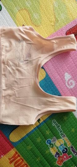 女童内衣小女孩发育期小背心式小学生棉质无钢圈无胸垫运动内衣小半衣2020新品 白色N5005 均码适合7~14岁中大童 晒单图