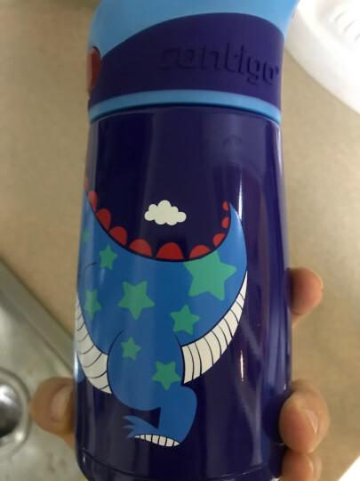 美国contigo康迪克保温水杯儿童保温吸管杯真空不锈钢杯 300ML小马伙伴HBC-STR102 晒单图