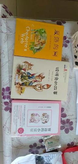 全2册窗边的小豆豆 夏洛的网小学生版 任溶溶中文原版8-9-10-12-15岁儿童文学三四五六年级 晒单图