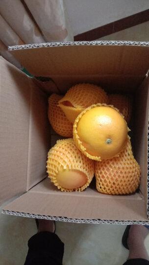 纯真鲜果 进口红心西柚 大果8个单果约400-300g 葡萄柚子 生鲜水果 晒单图