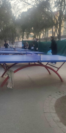 红双喜 乒乓球网架P305 乒乓球台球桌网架套装含网 晒单图