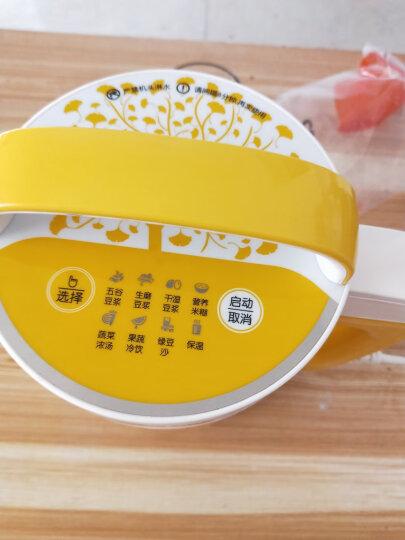 九阳(Joyoung)豆浆机1-1.2L全钢304级不锈钢家用多功能DJ12B-A11EC 晒单图