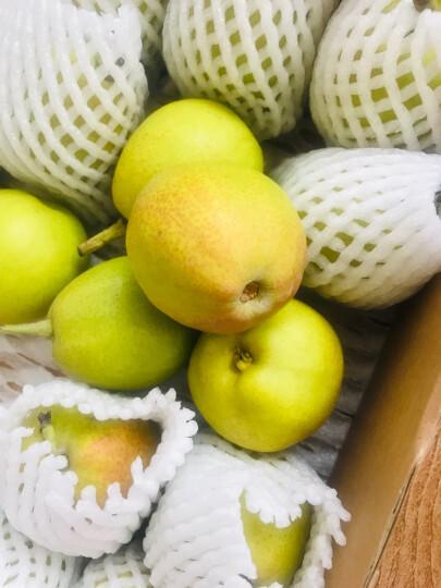 树懒果园 新疆库尔勒香梨 2.5kg 新鲜梨子 晒单图