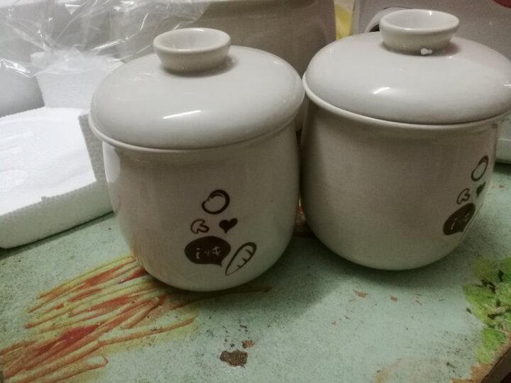 小熊(Bear)电炖锅 电炖盅 煲汤锅 隔水炖燕窝煮粥锅2.5L白瓷3胆养生陶瓷锅 DDZ-106 晒单图