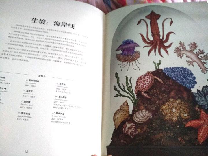 DK自然博物馆(精装) 晒单图