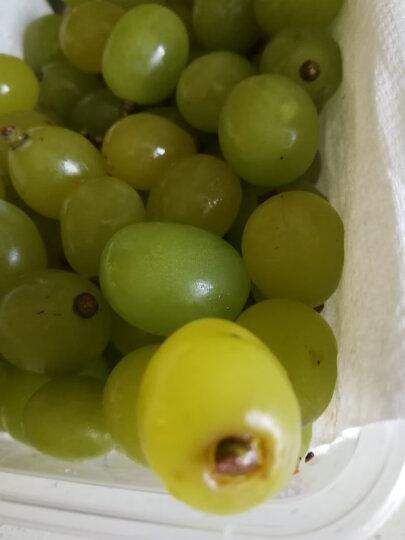 现摘阳光玫瑰青提葡萄水果新鲜香印青提 2.5kg 晒单图