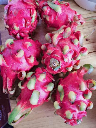越南进口红心火龙果 3个装 大果 单果约450~500g 新鲜水果 晒单图