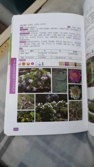 300种常见园林树木识别图鉴 晒单图