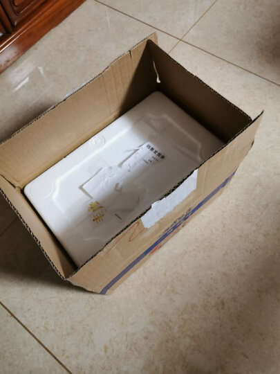 【新鲜去壳 纯肉 空运直达】丰度 青岛海螺肉 500g 盒装 去壳海螺头新鲜大海螺青岛海鲜贝类生鲜 晒单图
