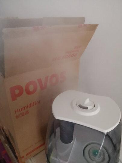 奔腾(POVOS)加湿器 4.5L大容量  静音迷你小型办公室卧室婴儿客厅家用空气净化加湿空调增湿器 PW113 晒单图