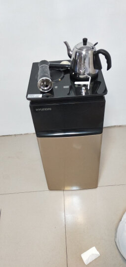 HYUNDAI(韩国现代) 多功能速热立式饮水茶吧机BL-C 晒单图