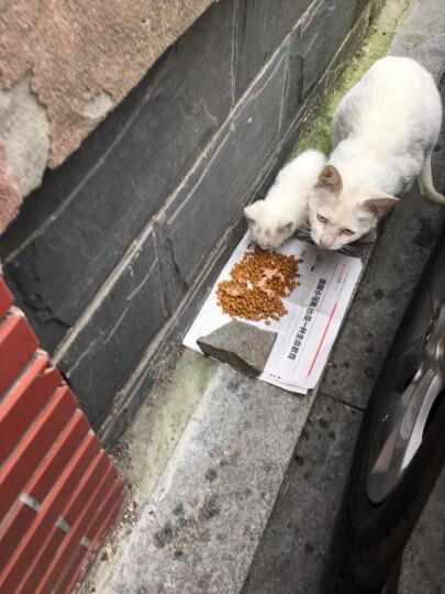 富力鲜泰国进口猫罐头 白身鲔鱼+牛肉罐头85g*24罐 整箱装 晒单图