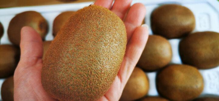 Zespri佳沛 新西兰绿奇异果 12个装 经典36果 单果重约90-100g 新鲜水果 晒单图