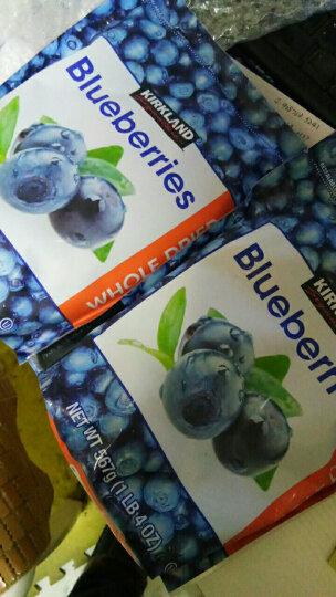 柯克兰Kirkland整粒蓝莓干567g蜜饯樱桃果干原装美国进口零食孕妇休闲零食小吃 乐事多 蔓越莓干1.5kg 晒单图