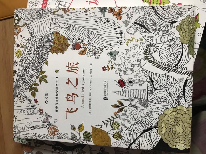 秘密花园涂绘学院丛书:中国的美(裸脊线装版) 晒单图