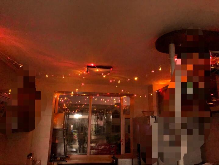 京唐 彩色蝴蝶情人节告白LED灯小彩灯闪灯串灯 婚庆房间布置装饰门厅走廊室外庭院花园挂灯 3米长51个灯头 晒单图