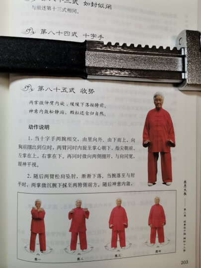 感恩太极:扎西解析传统杨式太极拳八十五式 晒单图