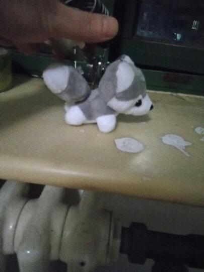 可爱创意毛绒哈士奇钥匙扣小狗玩偶挂件女包包挂饰汽车挂链礼物男 浅灰色 哈士奇 晒单图