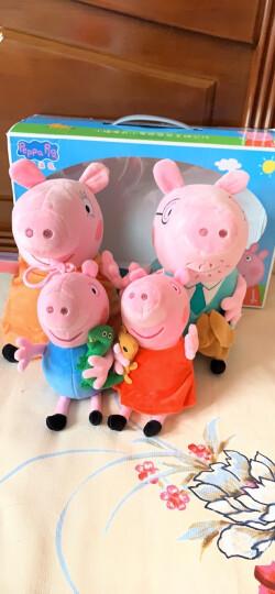 小猪佩奇(Peppa Pig)毛绒玩具抱枕公仔男孩女孩布娃娃玩偶系列 小号套装19cm+30cm 晒单图