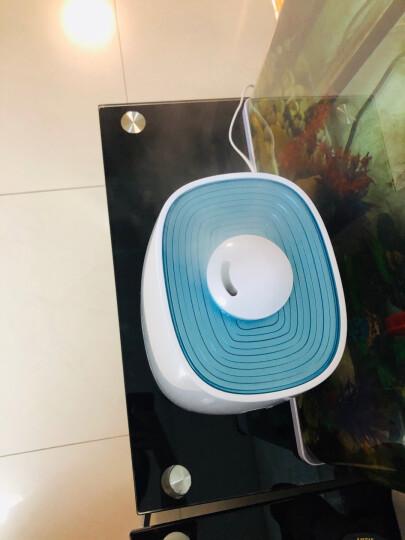 小熊(Bear)京品家电加湿器卧室迷你 办公室大雾量空气加湿器婴儿 桌面静音香薰机 5升大容量 JSQ-A50M2 晒单图