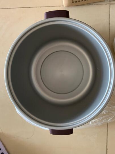 苏泊尔(SUPOR)电炖锅 电炖盅 煲汤锅 双炖锅5L 炖汤锅 煮粥锅 陶瓷燕窝炖盅 一锅四胆DZ22YC806-40 晒单图