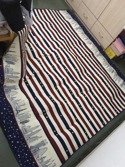 野餐垫防潮垫户外大号野炊营沙滩帐篷地垫防水加厚草坪垫子野餐布 200*150-红蓝条纹(涤棉)1 晒单图