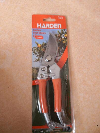汉顿(Harden)树枝剪不锈钢果树剪刀家用修枝剪花卉剪刀园林园艺剪刀630416 晒单图