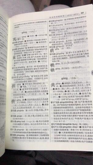 中华大字典 小学生多功能字典  2020年新版中小学生专用辞书工具书字典词典小学生工具书 晒单图